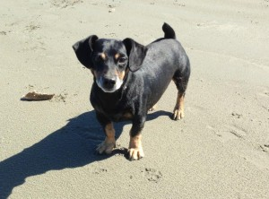 LT on Beach